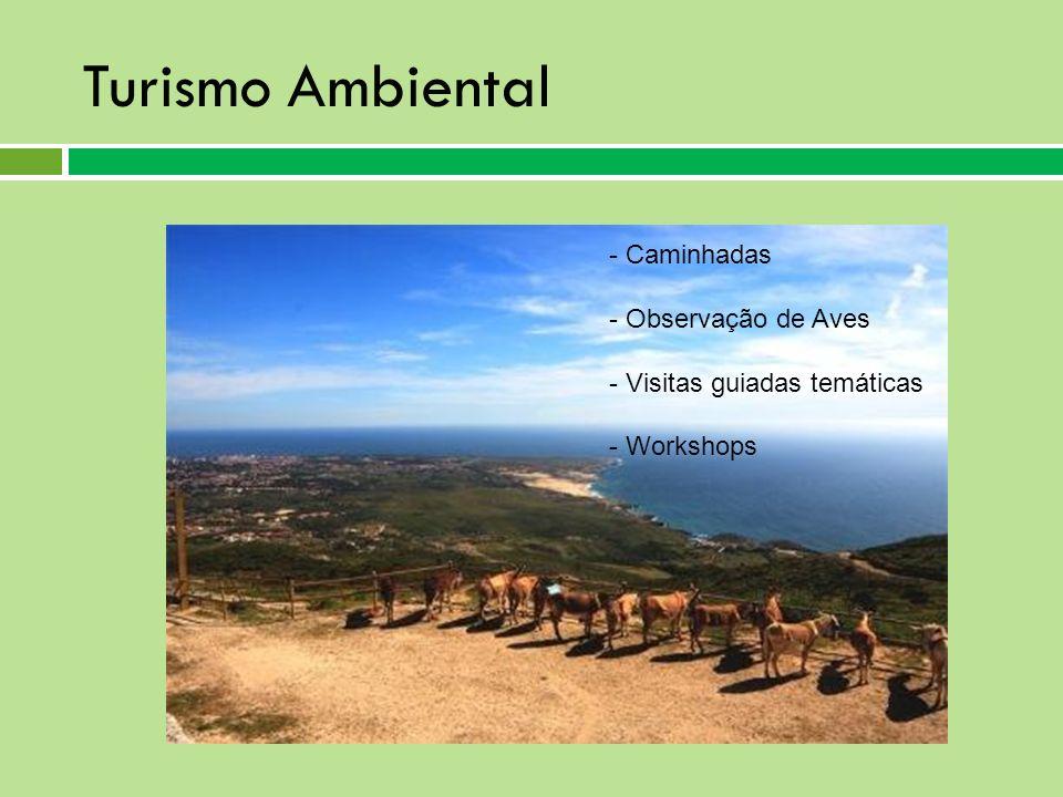Turismo Ambiental Caminhadas Observação de Aves