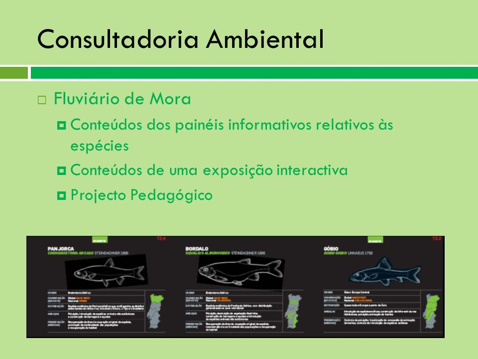 Consultadoria Ambiental