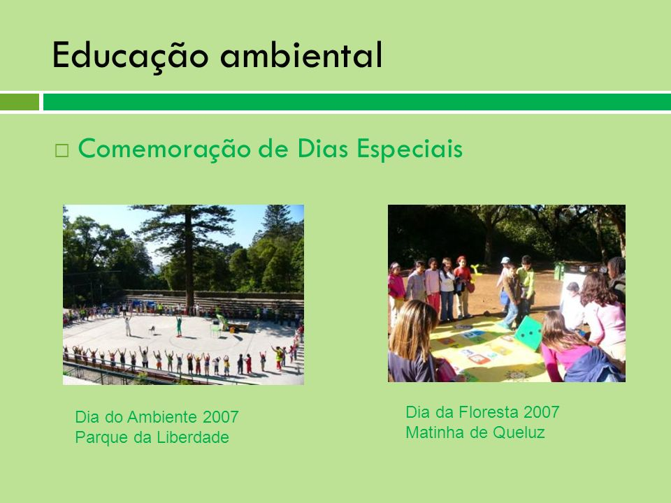 Educação ambiental Comemoração de Dias Especiais Dia da Floresta 2007