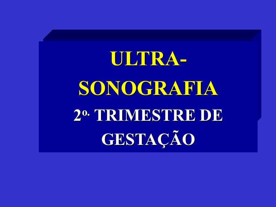 2o. TRIMESTRE DE GESTAÇÃO