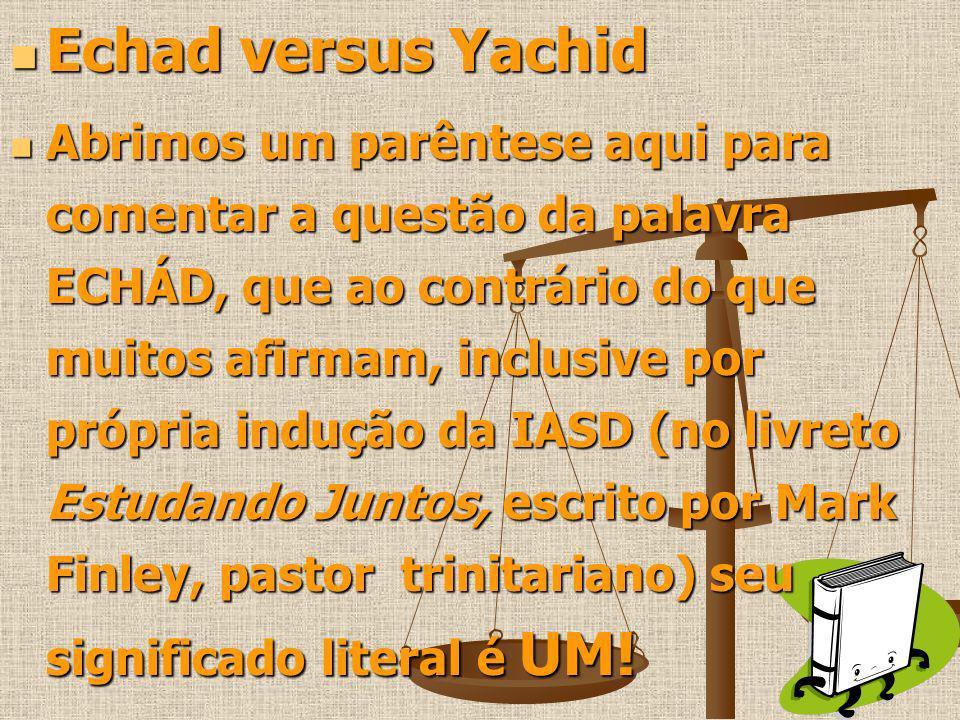 Echad versus Yachid