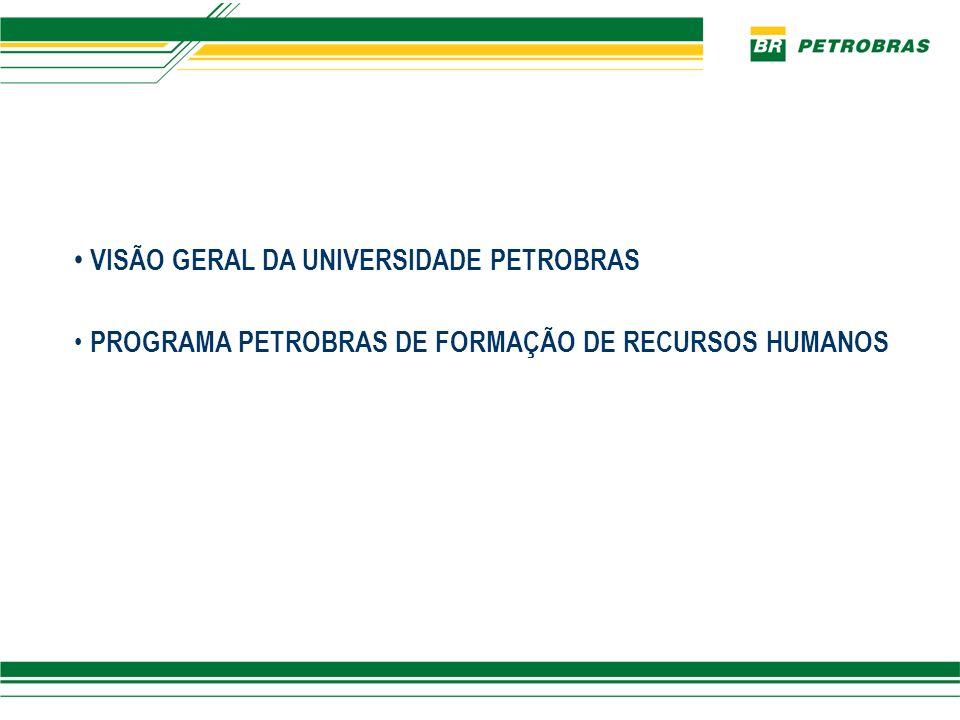 VISÃO GERAL DA UNIVERSIDADE PETROBRAS