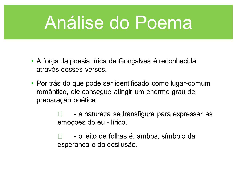 Análise do Poema A força da poesia lírica de Gonçalves é reconhecida através desses versos.