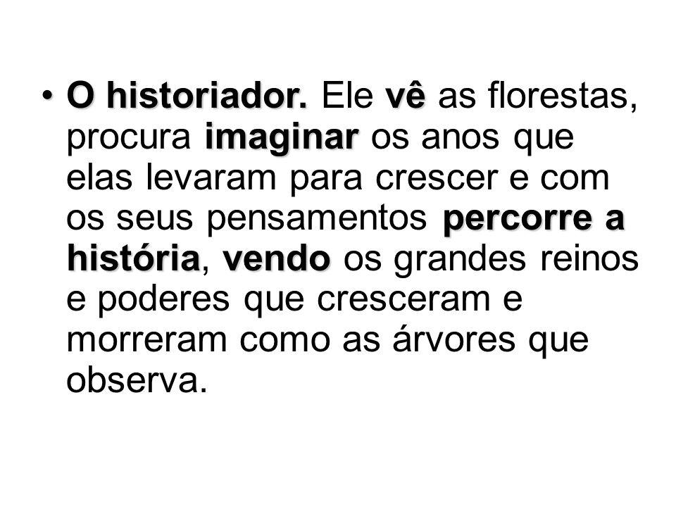O historiador.