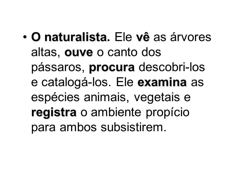 O naturalista.