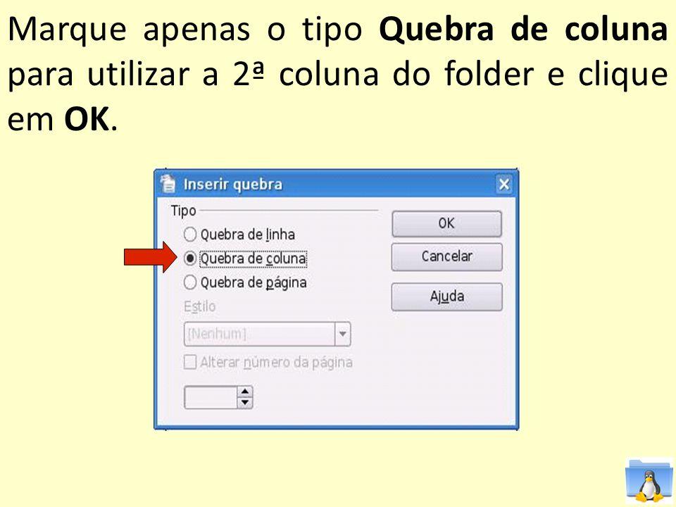 Marque apenas o tipo Quebra de coluna para utilizar a 2ª coluna do folder e clique em OK.