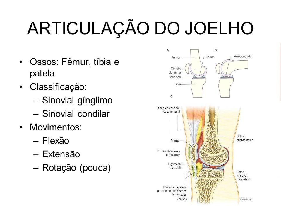 ARTICULAÇÃO DO JOELHO Ossos: Fêmur, tíbia e patela Classificação:
