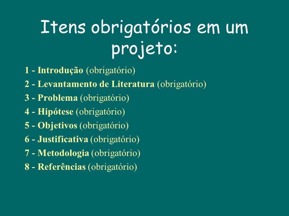 Itens obrigatórios em um projeto: