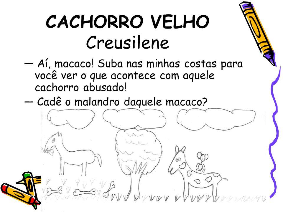 CACHORRO VELHO Creusilene