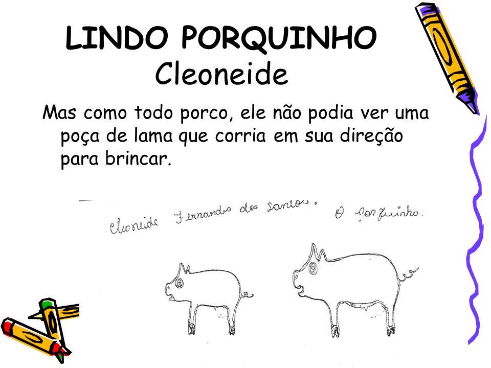 LINDO PORQUINHO Cleoneide
