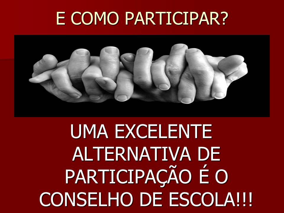 UMA EXCELENTE ALTERNATIVA DE PARTICIPAÇÃO É O CONSELHO DE ESCOLA!!!