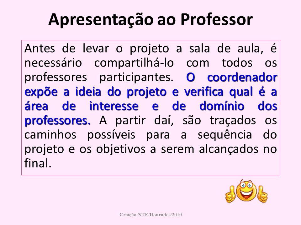 Apresentação ao Professor