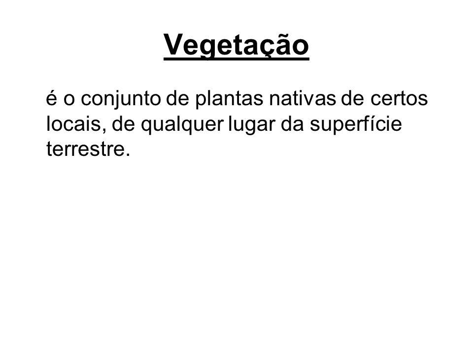 Vegetação é o conjunto de plantas nativas de certos locais, de qualquer lugar da superfície terrestre.
