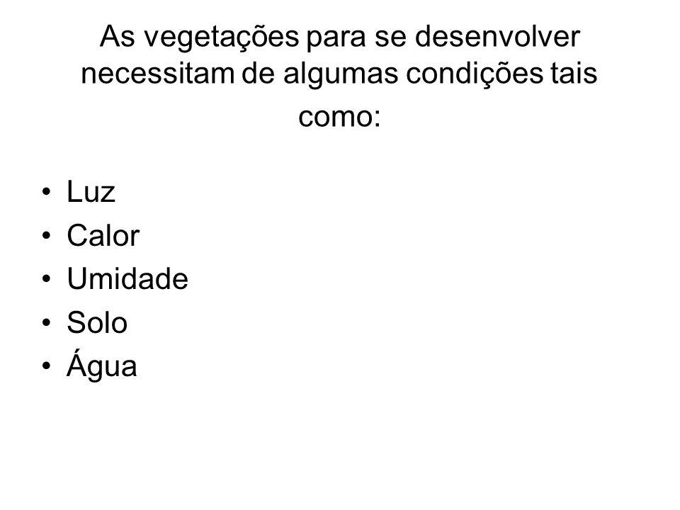 As vegetações para se desenvolver necessitam de algumas condições tais como: