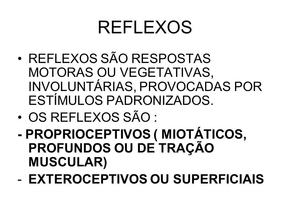 REFLEXOS REFLEXOS SÃO RESPOSTAS MOTORAS OU VEGETATIVAS, INVOLUNTÁRIAS, PROVOCADAS POR ESTÍMULOS PADRONIZADOS.