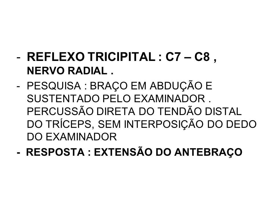 REFLEXO TRICIPITAL : C7 – C8 , NERVO RADIAL .