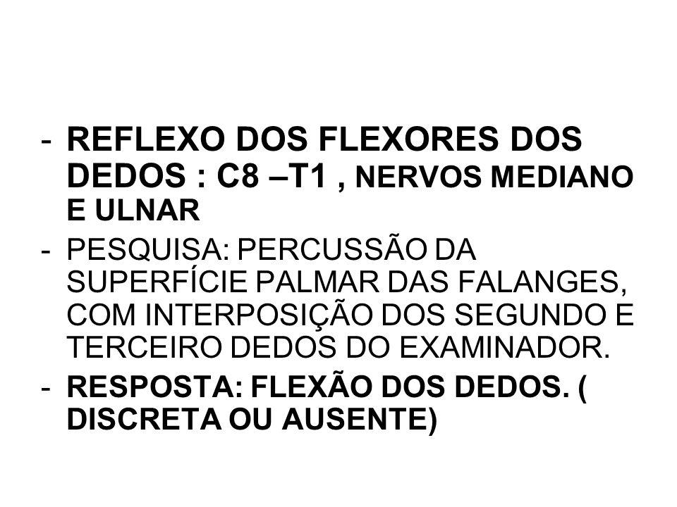 REFLEXO DOS FLEXORES DOS DEDOS : C8 –T1 , NERVOS MEDIANO E ULNAR