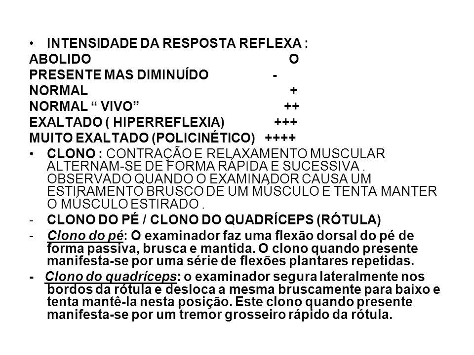 INTENSIDADE DA RESPOSTA REFLEXA :