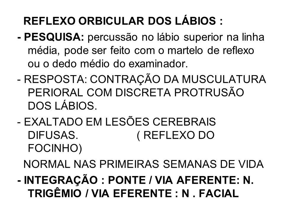 REFLEXO ORBICULAR DOS LÁBIOS :