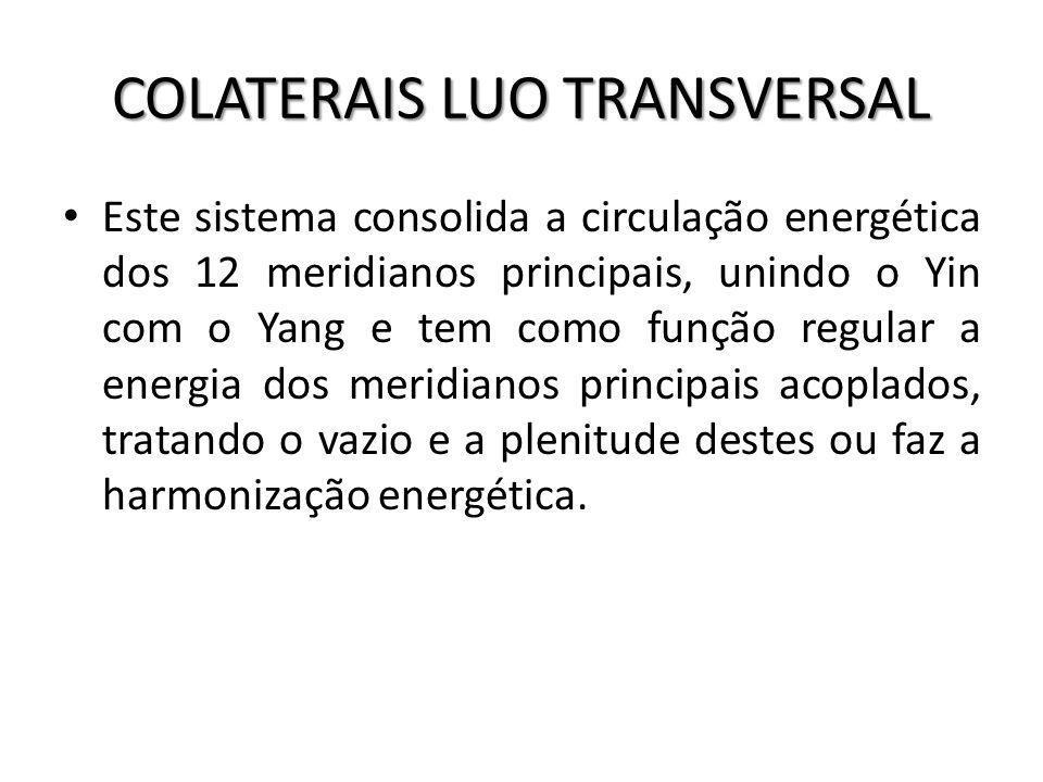 COLATERAIS LUO TRANSVERSAL
