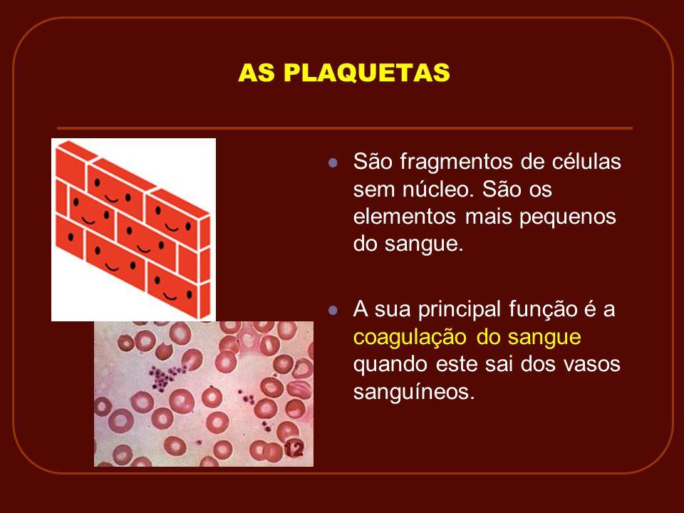 AS PLAQUETAS São fragmentos de células sem núcleo. São os elementos mais pequenos do sangue.