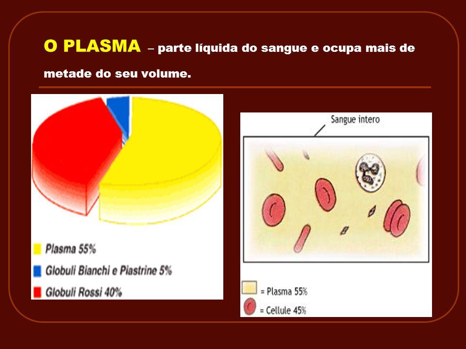 O PLASMA – parte líquida do sangue e ocupa mais de metade do seu volume.