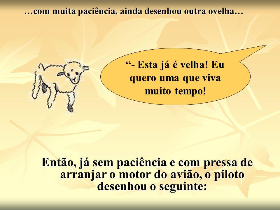 …com muita paciência, ainda desenhou outra ovelha…
