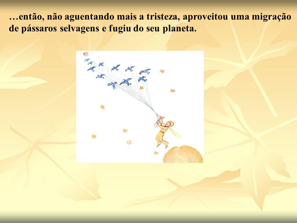 …então, não aguentando mais a tristeza, aproveitou uma migração de pássaros selvagens e fugiu do seu planeta.