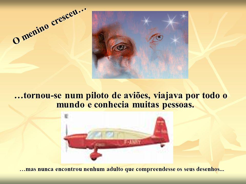 O menino cresceu……tornou-se num piloto de aviões, viajava por todo o mundo e conhecia muitas pessoas.