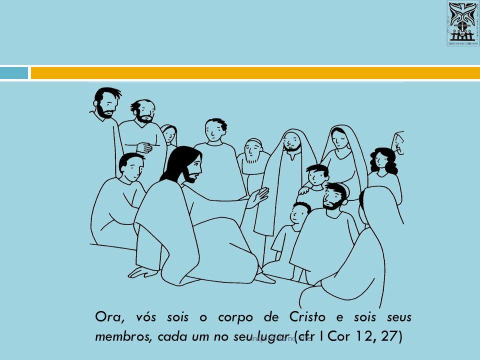 Ora, vós sois o corpo de Cristo e sois seus membros, cada um no seu lugar (cfr I Cor 12, 27)