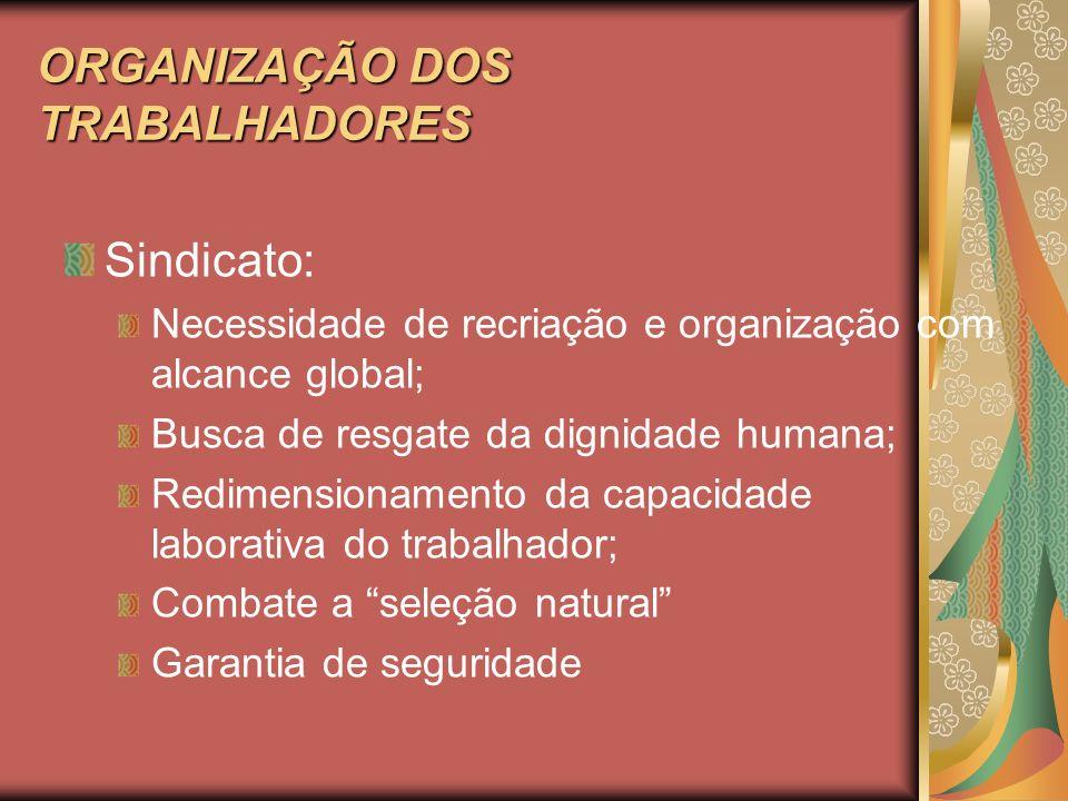ORGANIZAÇÃO DOS TRABALHADORES