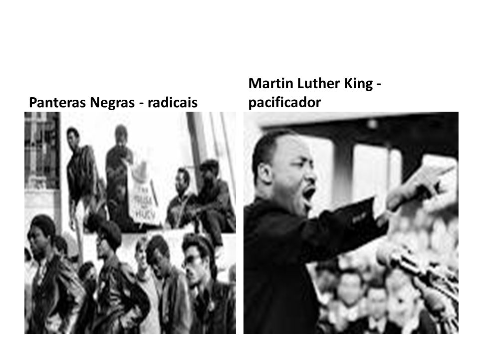 Panteras Negras - radicais