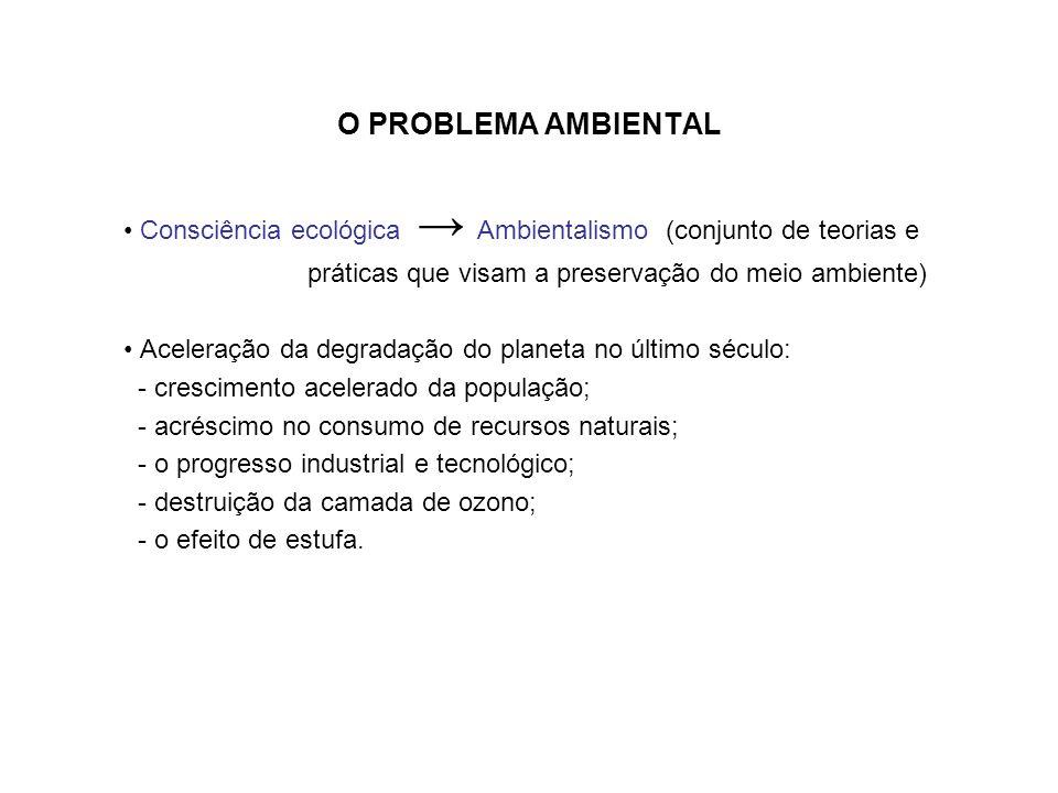 O PROBLEMA AMBIENTAL • Consciência ecológica → Ambientalismo (conjunto de teorias e. práticas que visam a preservação do meio ambiente)