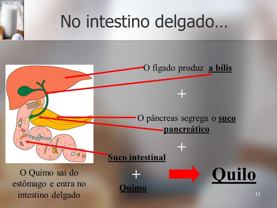 Quilo No intestino delgado… + + + O fígado produz a bílis