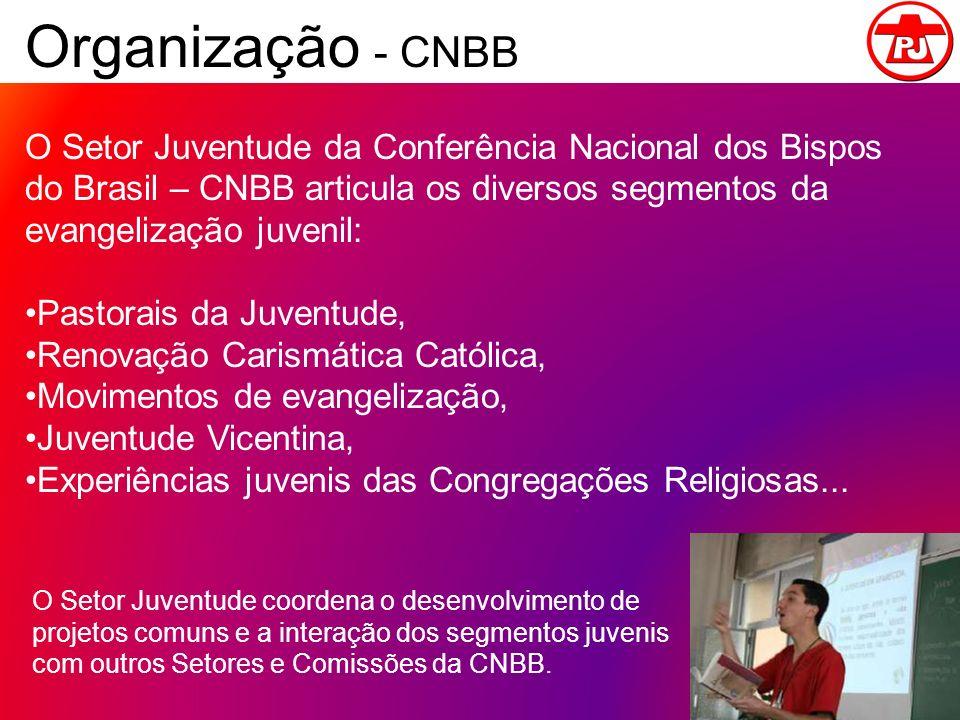 Organização - CNBB O Setor Juventude da Conferência Nacional dos Bispos do Brasil – CNBB articula os diversos segmentos da evangelização juvenil:
