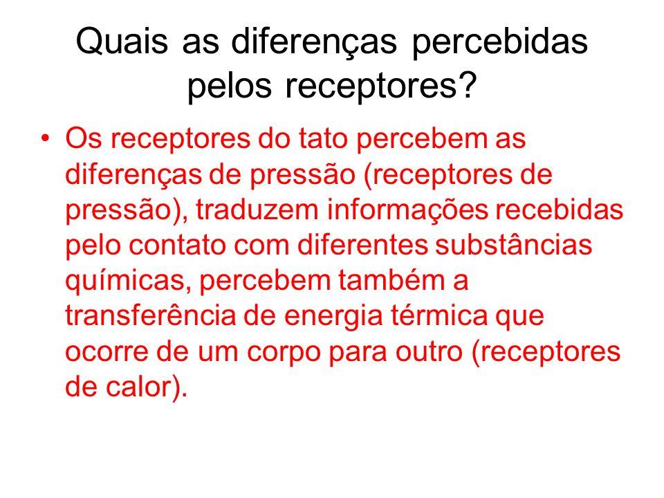 Quais as diferenças percebidas pelos receptores