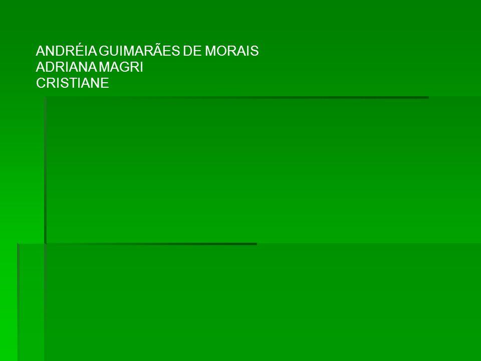 ANDRÉIA GUIMARÃES DE MORAIS