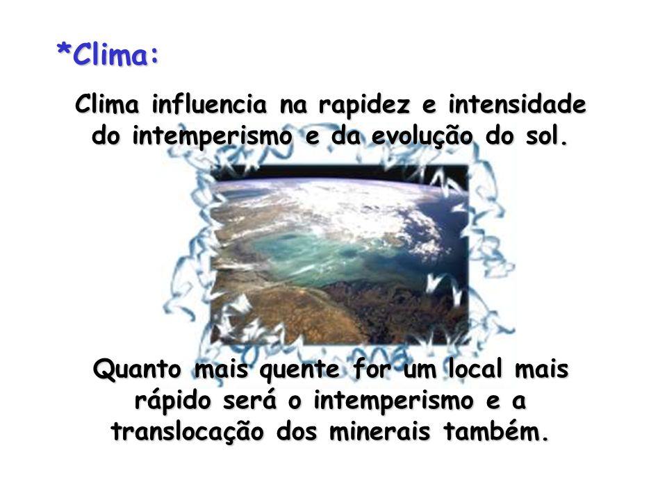*Clima:Clima influencia na rapidez e intensidade do intemperismo e da evolução do sol.
