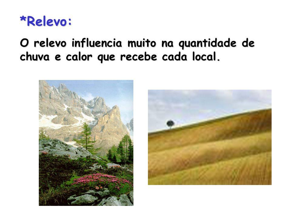 *Relevo: O relevo influencia muito na quantidade de chuva e calor que recebe cada local.
