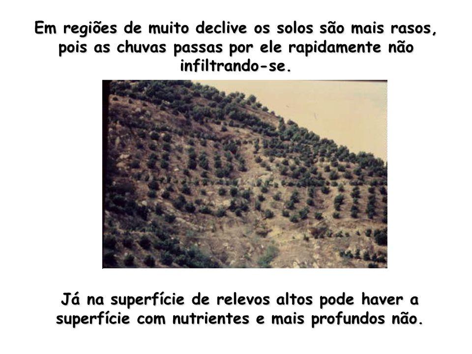 Em regiões de muito declive os solos são mais rasos, pois as chuvas passas por ele rapidamente não infiltrando-se.