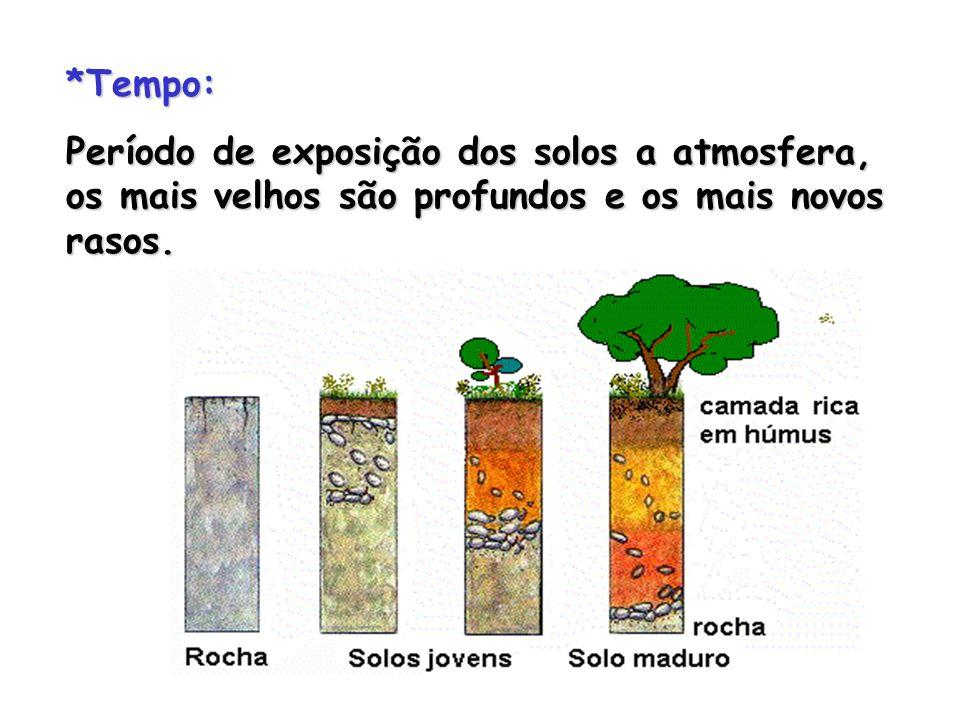 *Tempo:Período de exposição dos solos a atmosfera, os mais velhos são profundos e os mais novos rasos.