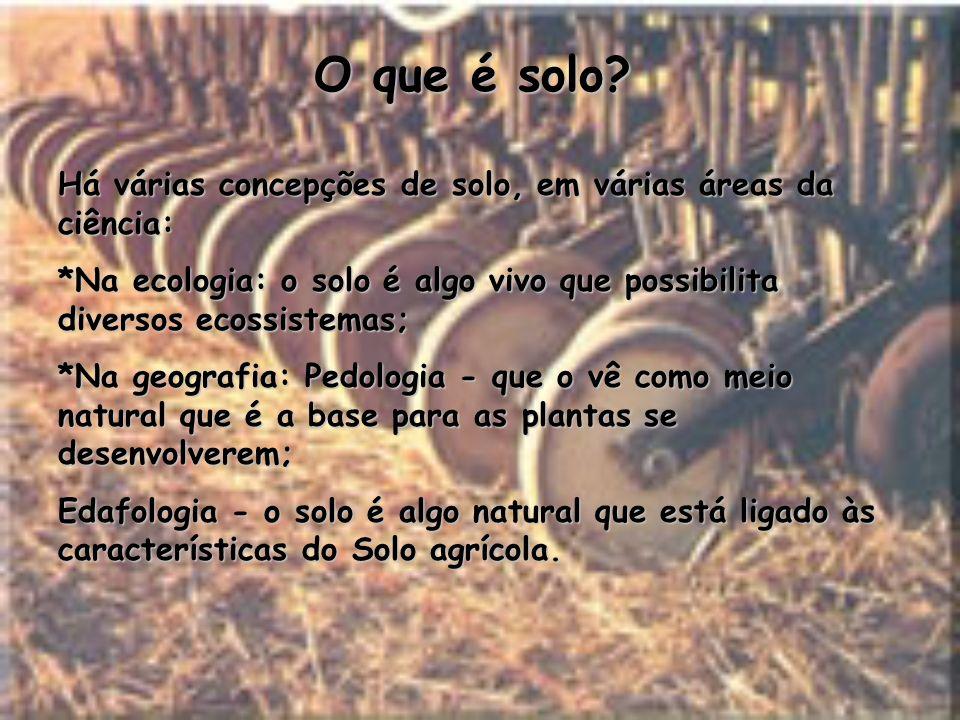 O que é solo Há várias concepções de solo, em várias áreas da ciência: *Na ecologia: o solo é algo vivo que possibilita diversos ecossistemas;