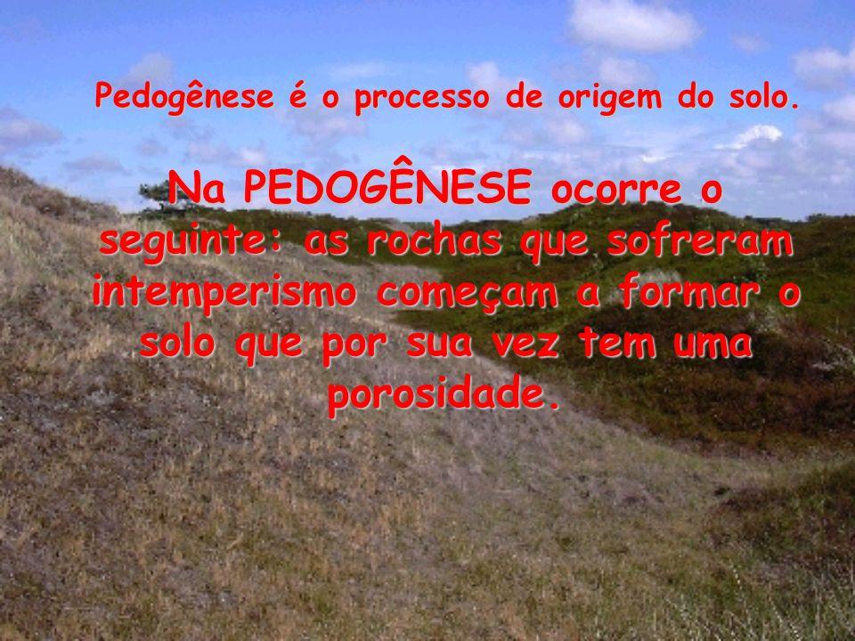 Pedogênese é o processo de origem do solo.