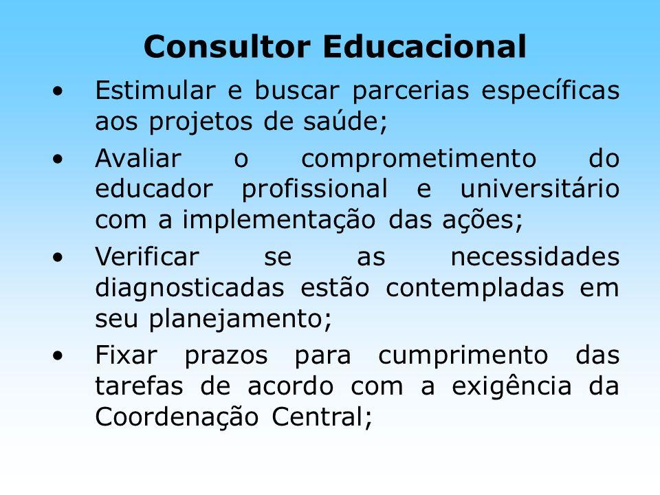 Consultor Educacional