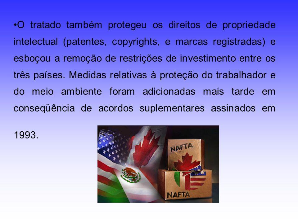 O tratado também protegeu os direitos de propriedade intelectual (patentes, copyrights, e marcas registradas) e esboçou a remoção de restrições de investimento entre os três países.