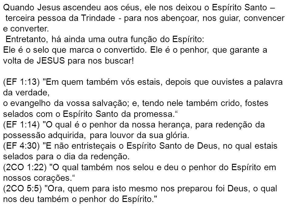 Quando Jesus ascendeu aos céus, ele nos deixou o Espírito Santo –
