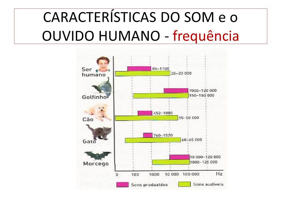 CARACTERÍSTICAS DO SOM e o OUVIDO HUMANO - frequência