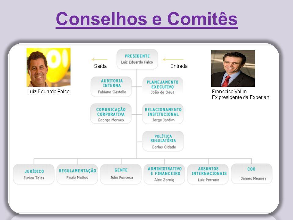 Conselhos e Comitês Saída Entrada Luiz Eduardo Falco Fransciso Valim