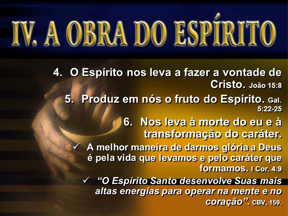 O Espírito nos leva a fazer a vontade de Cristo. João 15:8