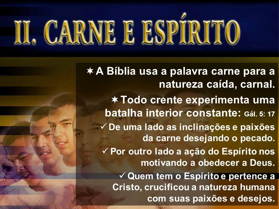 A Bíblia usa a palavra carne para a natureza caída, carnal.